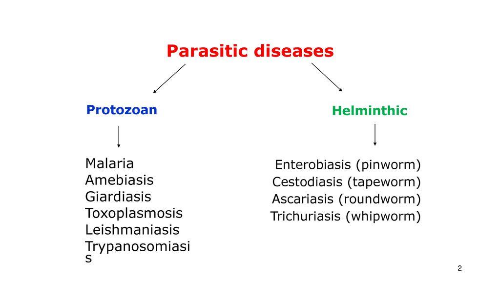 Giardia Ascaridosis malária, Paraziták a májban: jelek, tünetek és kezelés