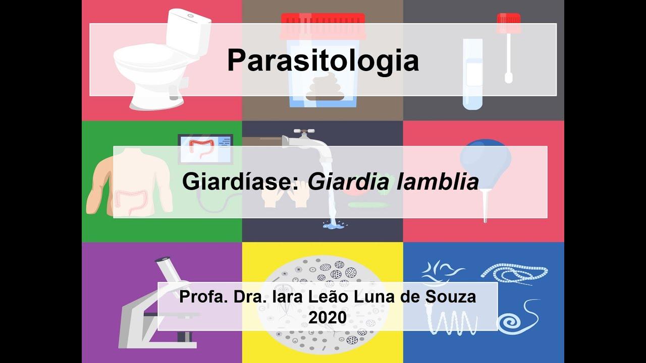 Giardia és kerekférgek elleni antitestek - Giardiasis elleni antitestek
