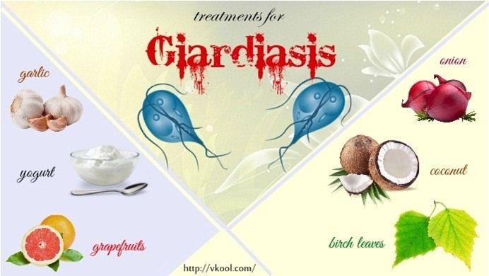 giardiasis humans treatment