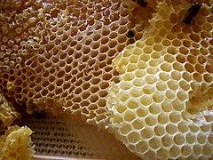 sashera méz mérgező