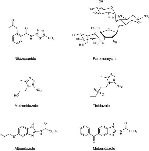 Giardia and cryptosporidium treatment, Giardiasis húsevők