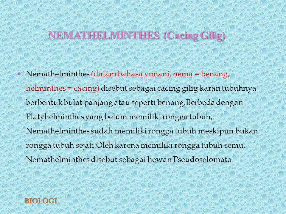 peranan nemathelminthes dalam kehidupan
