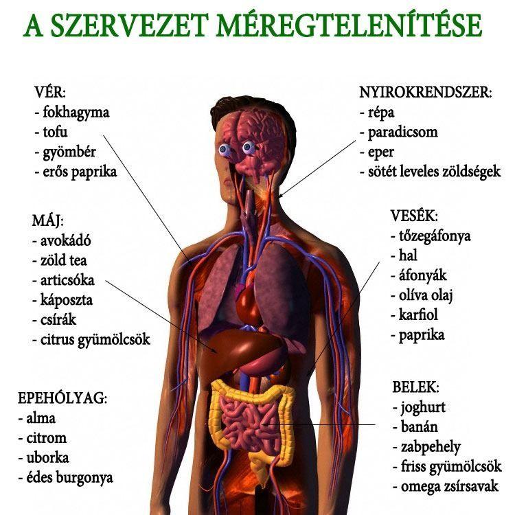 Népi gyógyszer a káposzta parazitáira