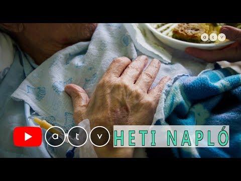 Bélférgesség tünetei és kezelése Hogyan lehet gyógyítani a férgek kezelését