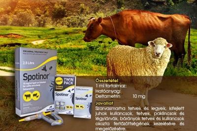 bárányok kezelése férgek számára