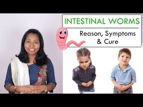 pinworms gyermekeknél évente történő kezelés