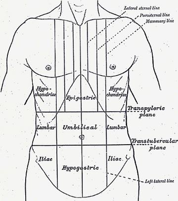 Reflux tünetei és kezelése - HáziPatika, Hasi fájdalom rossz lehelet okoz