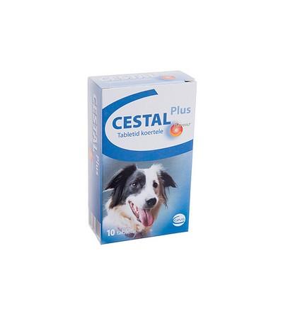 Drontal Cat féreghajtó tabletta 2db - Széles spektrumú féreghajtó készítmény - 15% kedvezmény