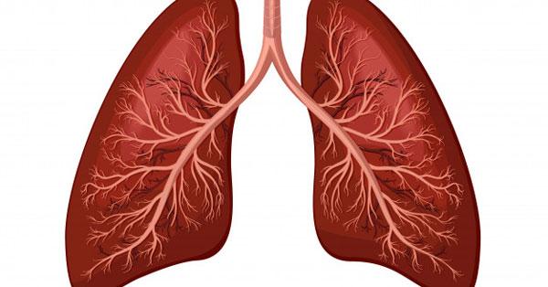 Paraziták ellen a tüdőben. A tüdő giardiasis