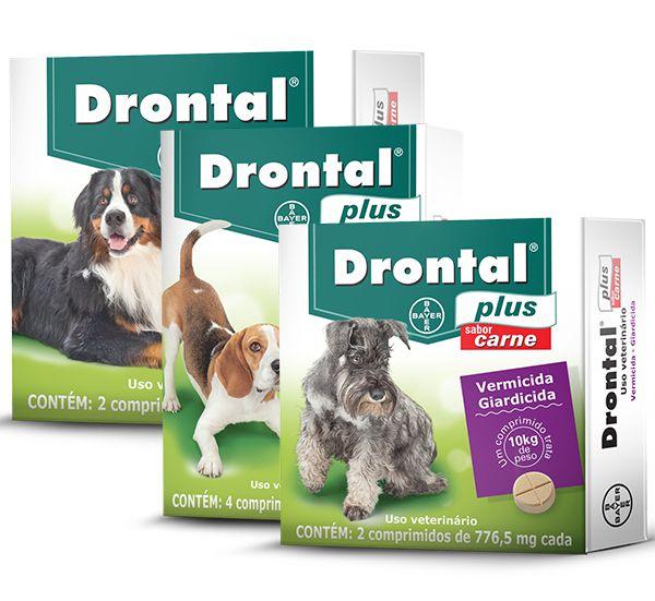 Drontal plus giardiasis
