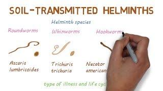 helminths helminthiases megelőzi őket