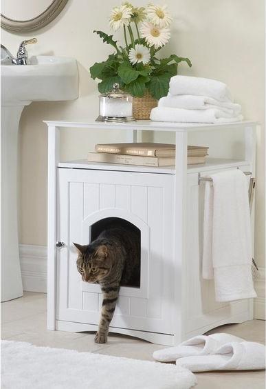 macska szaga bélfergesseg tünetei felnottkorban
