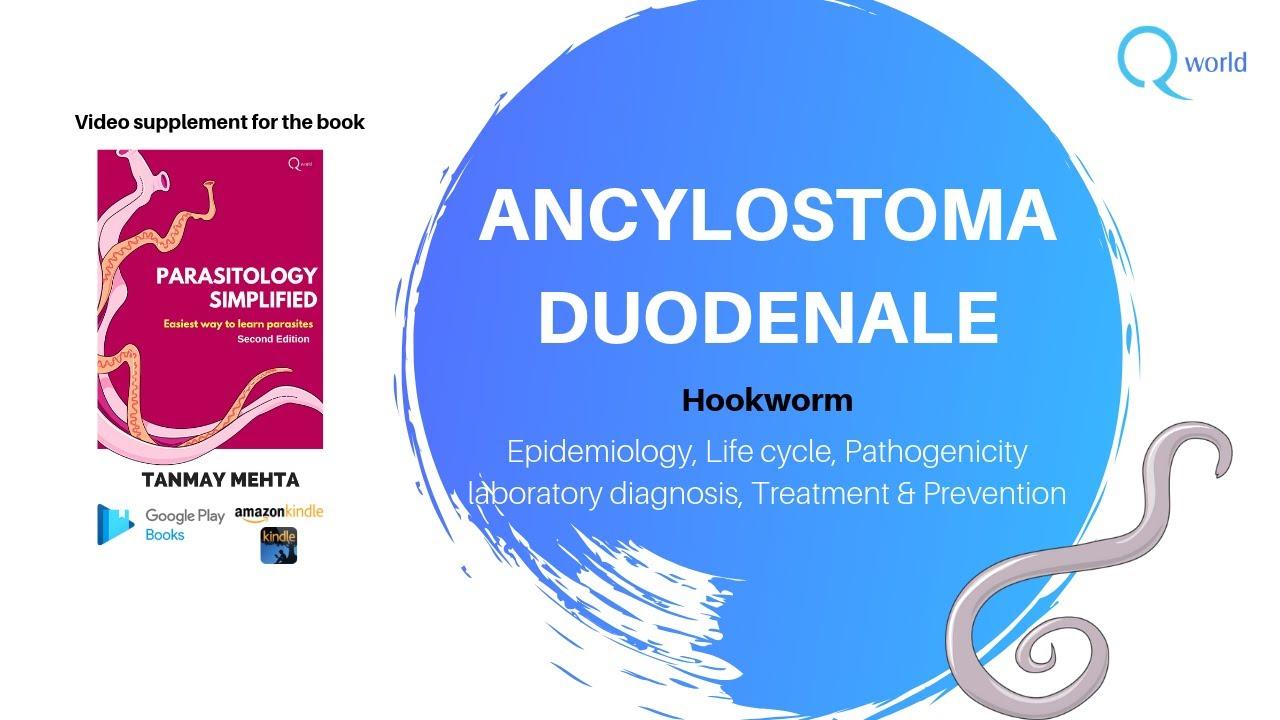 trichocephalosis etiológiája