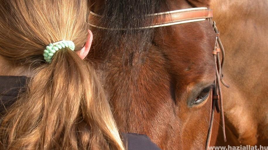 Megfázás, por, füst, szmog, penész okozta köhögés, orrfolyás - Ló köhögés férgek nem gyógyszer