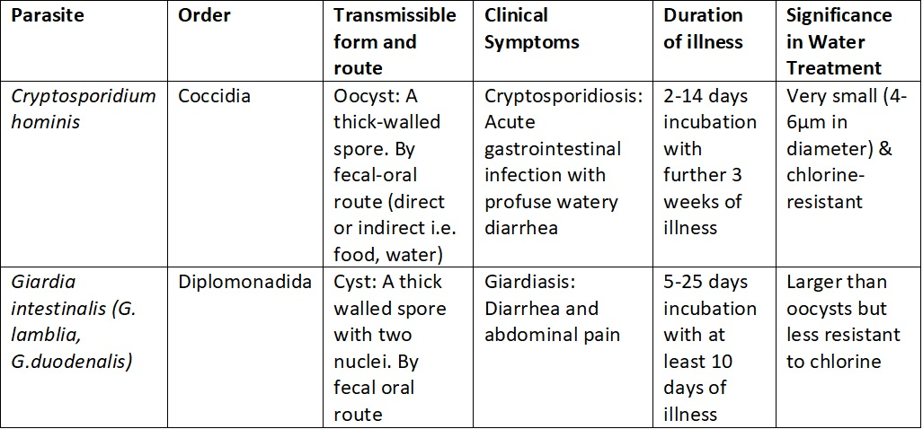giardia cryptosporidium ag stool platyhelminthes planáris test burkolás